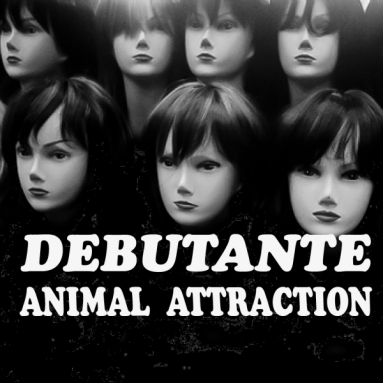 Album cover for Animal Attraction